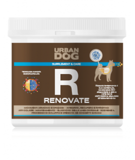 Urban Dog RENOVATE - Maisto...