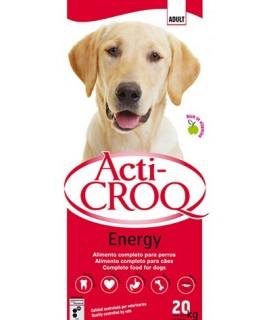 Acti-croq energy. Sausas...